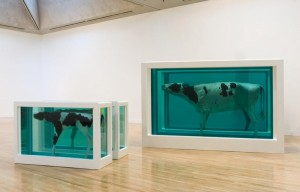 Damien Hirst, Mother and Child Divided original, 1993