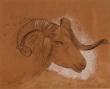 """Barbasán Lagueruela, Mariano - """"La cabra montesa"""""""